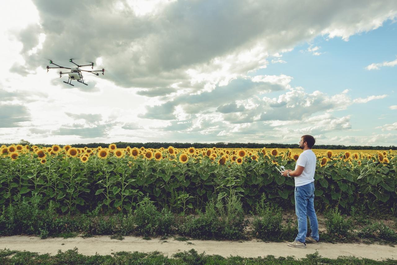 С помощью дронов можно мониторить состояние посевов