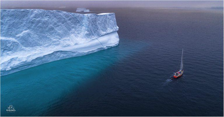 Аренда яхты в Антарктиду для одной группы стоила 50 тыс. евро. «Если человек не поехал – мы несем прямые убытки»