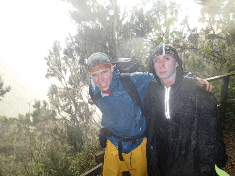 Во время дождя в лесу подКили