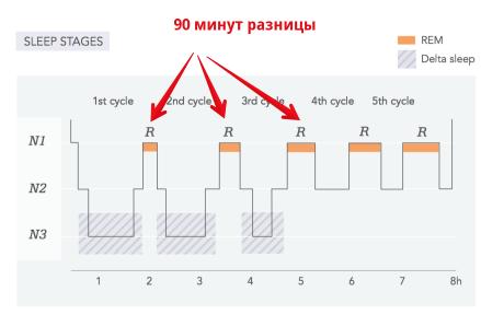 Как устроены циклысна