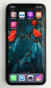 Любимые приложения Веры Черныш на iPhone Xs