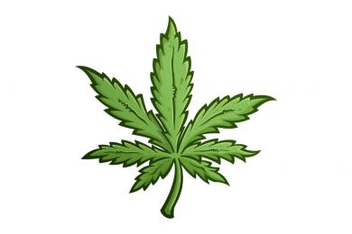 В Украине могут разрешить курить марихуану в медицинских целях. Разбираемся в нюансах законопроекта