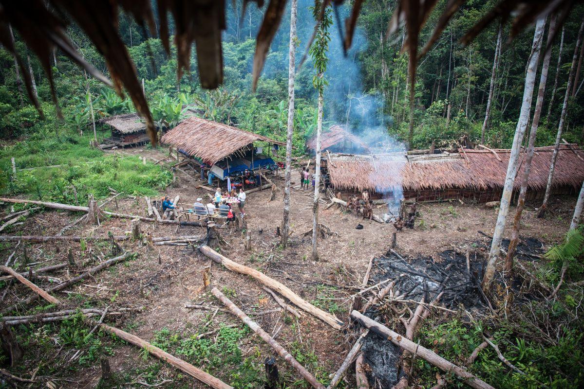 Дмитрий Корчевский в путешествии по Папуа-Новой Гвинее