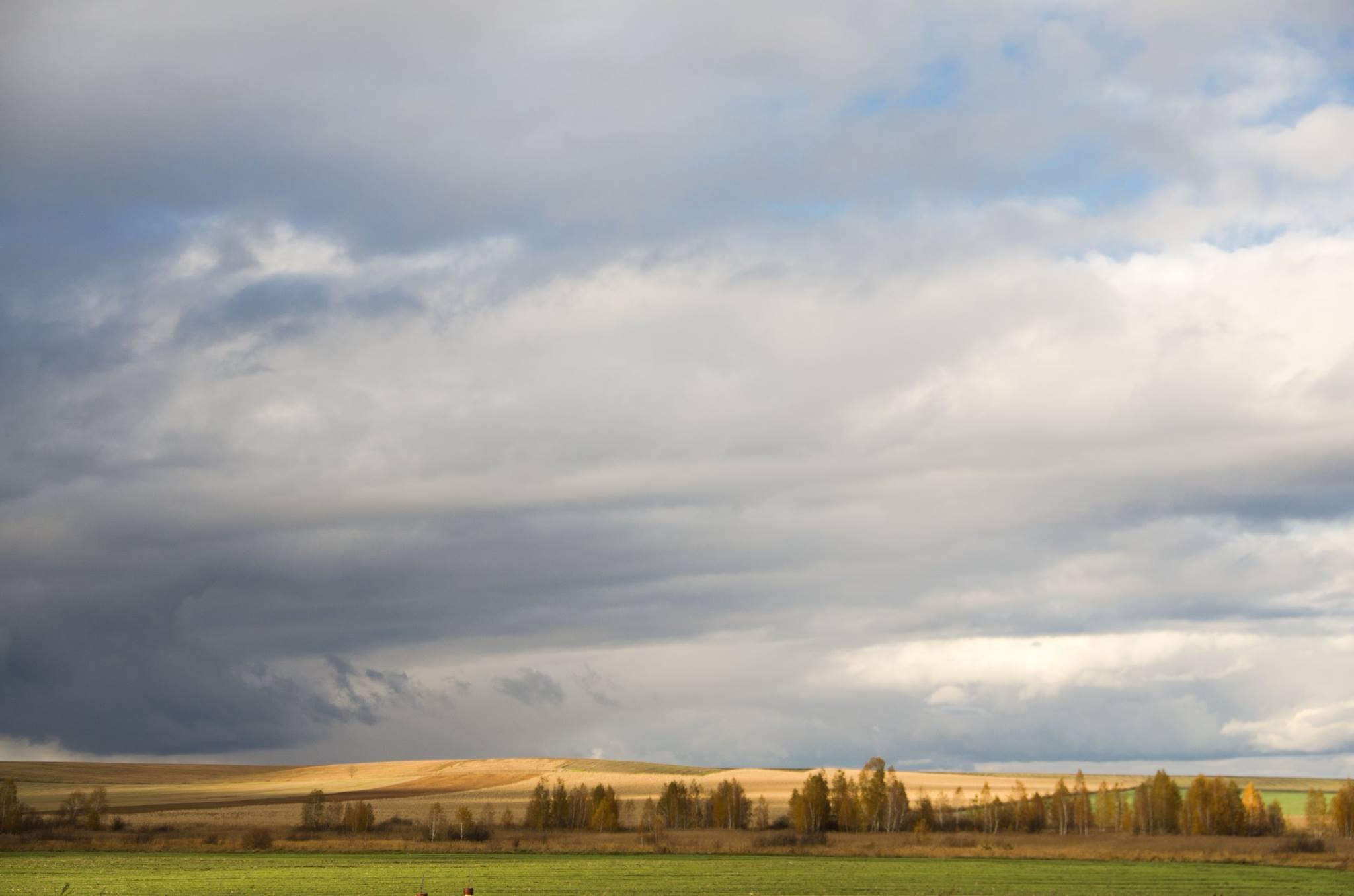 Верховная Рада поддержала снятие моратория на продажу земли