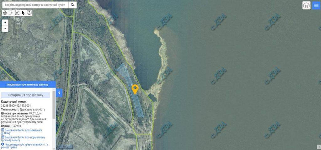 Спутниковое фото участка