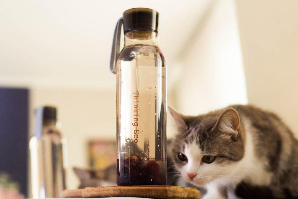 Бутылка с Meest China Shop и кошка Мышка