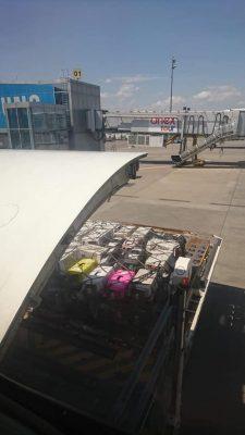 На фото, которое выложило Эбби, видно, как животных в клетках грузят в аэропорту. Источник фото: Facebook