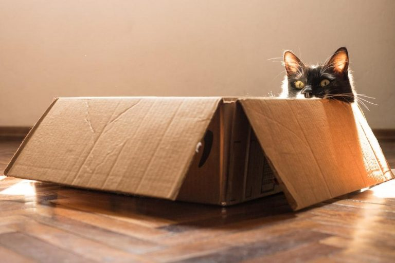 Когда говорят о креативности, часто рекомендуют «выйти за рамки» и мыслить «вне коробки».
