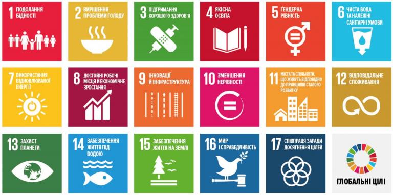 Young SDG Innovators Program