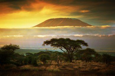 Гора Килиманджаро, Танзания. Источник: Depositphotos